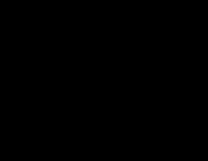 Mariposa Vidriada